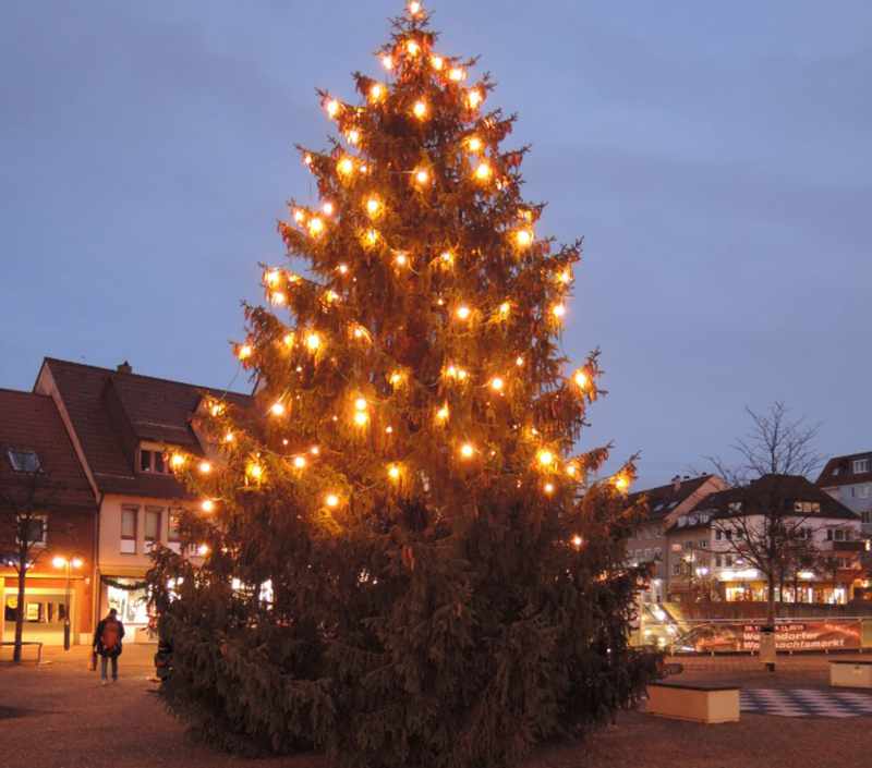 viel lob f r den sch nen weihnachtsbaum am l wen markt. Black Bedroom Furniture Sets. Home Design Ideas